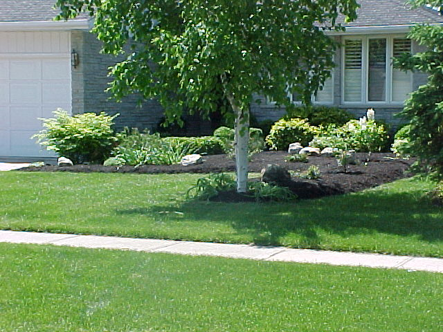 Charmant Pruning Lawn In Guelph